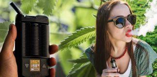 dry herb vaporiser