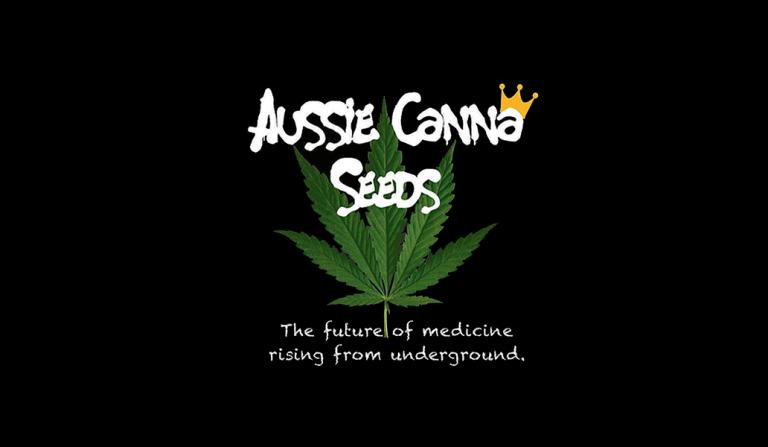 Aussie Canna Seeds