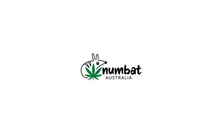 Numbat Australia