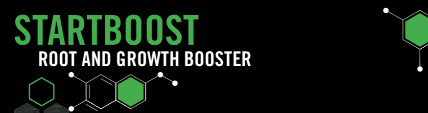 About STARTBOOST